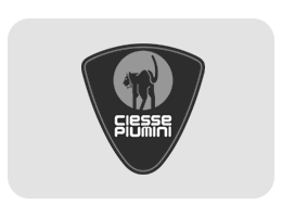 Ciesse da Hobby Sport Roma